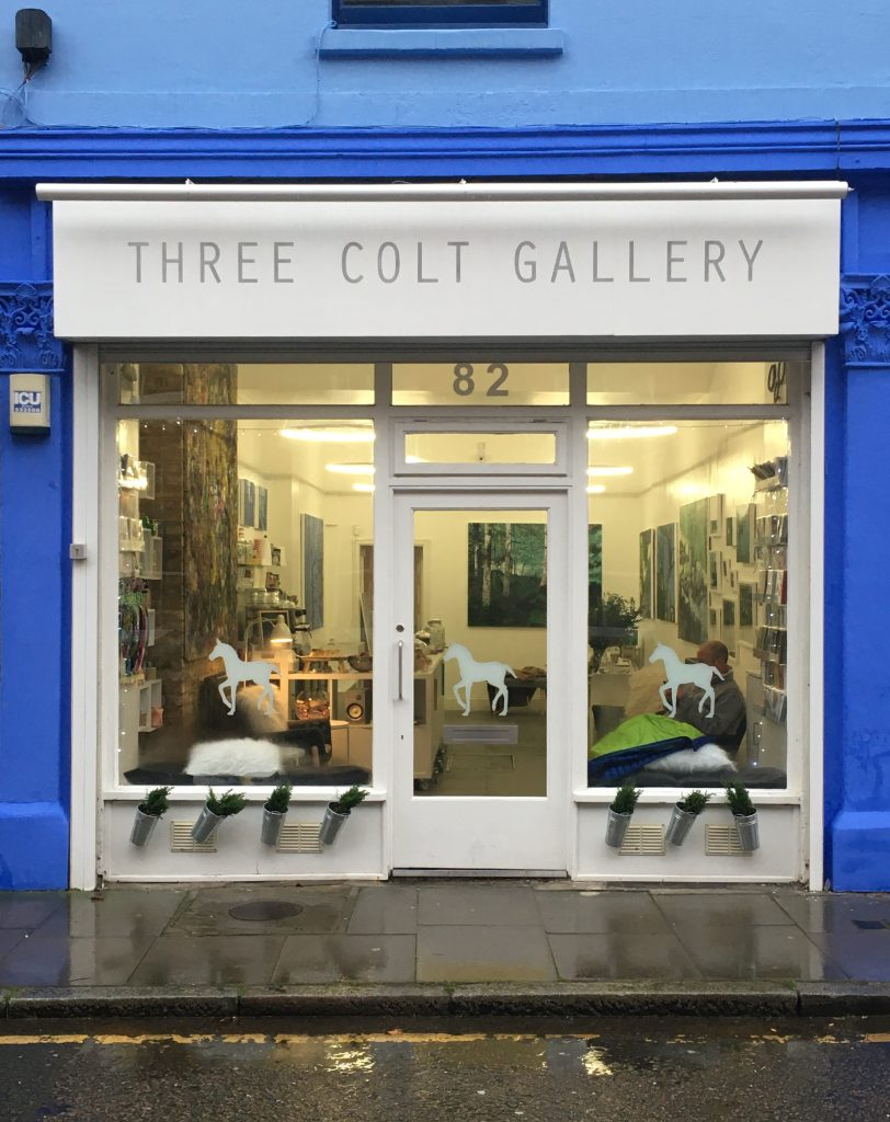 Solo Show opens Three Colt Gallery - March 2020